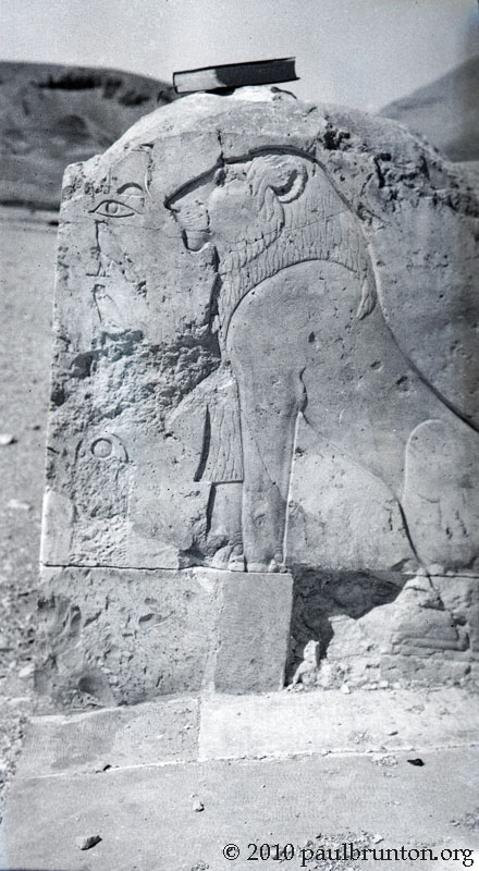 Lion_relief_at_Karnak_with_copyright